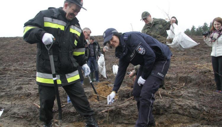 """Policjanci włączyli się w akcję """"1000 drzew na minutę"""""""