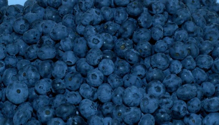 Czy niewielki owoc skrywa eliksir młodości?
