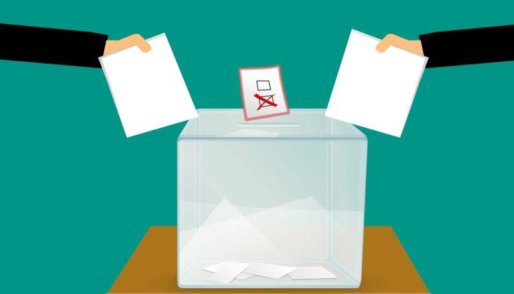 Wyniki wyborów w regionie